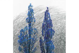 Ben Gowertt, Imaginary Seasons background